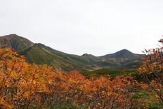 北鎮岳から連なる山並み