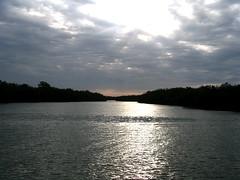 manglares de Tumbes Peru