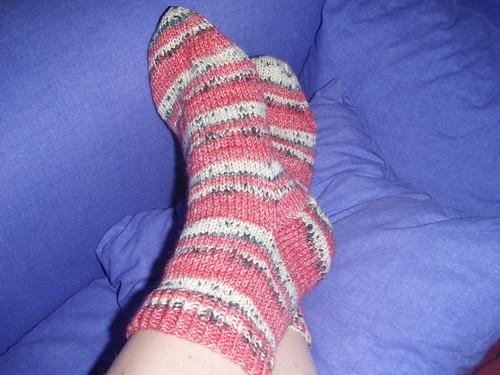 Ladybird Socks 1