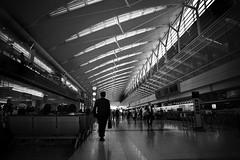 Tokyo International Airport2