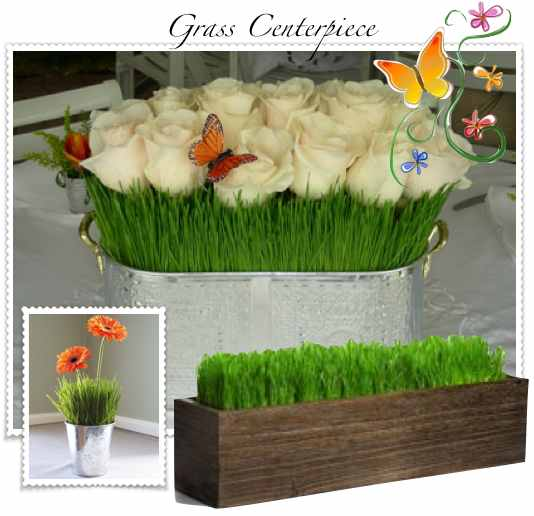 It makes a great living centerpiece for a spring or summer wedding
