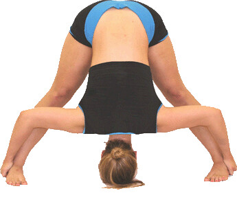 yoga_asan