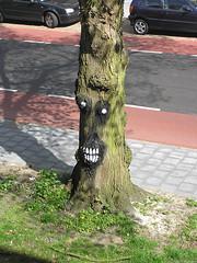 (Zwolse bomen) Tags: trees tree art de graffiti bomen kunst ko zwolle zwolse boswachter cabk