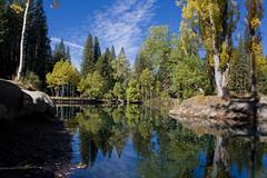 Yosemite Birch Lake (alex lichtenberger) Tags: autumn usa canon nationalpark yosemite eos450d 450d canoneos450d digitalrebelxsi rebelxsi