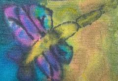 dragonfly sock blank