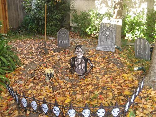 pumpkins 013