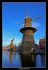 Windmill - Schiedam (DolliaSH) Tags: city trip travel blue vacation sky holiday holland tourism water windmill dutch canon eos tour place nederland thenetherlands wideangle visit location tourist journey destination traveling visiting ultrawide efs 1022mm hdr touring molen 1022 ih schiedam windmolen zuidholland southholland 50d visitholland canon50d worldtrekker qualitypixels dollia flickrlovers dollias sheombar anmazingnetherlands