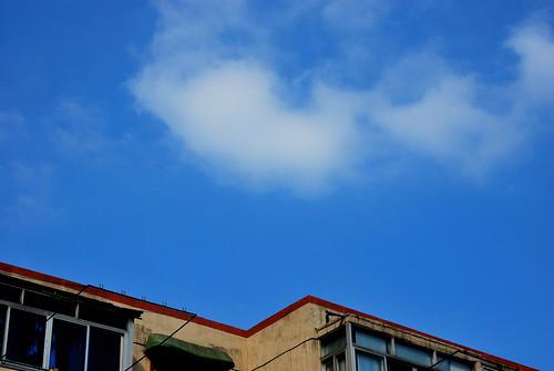 公司平台的天空