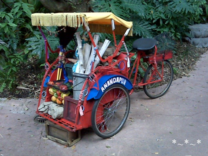 IMG01441-Maharajah-Jungle-Trek-Red-Rickshaw-Cycle