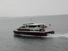 Many small ferries ply the fjords