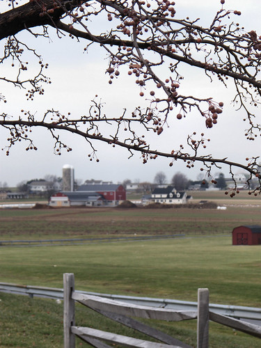 Winter in Amish Country by katiemetz on Flickr