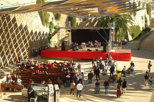 Diada de Cultura Popular i Tradicional. 2008