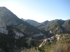 Bear Canyon.jpg (Altacanyada, California, United States) Photo