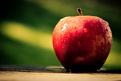~ crisp. (CarolynsHope) Tags: light red summer sunlight color green apple nature wet colors fruit juicy yummy healthy waterdrop colorful dof yum sweet bokeh background tasty fresh teacher delicious crispy crisp eat health snack apples waterdrops temptation simple weightloss vitamins ripe tempting nutritious mouthwatering tempt enticing nutrients anappleaday palatable tempations eatright