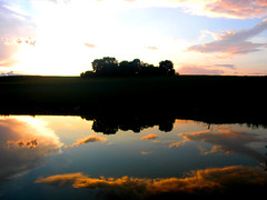 Reflejo (a l l i l l a) Tags: lake tree lago atardecer deutschland mirror see rboles spiegel reflejo alemania baum bumen