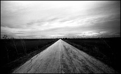 The long way home. (flevia) Tags: winter bw italy cold dark italia windy bn campagna inverno puglia biancoenero livid sud vento nikonfa bonifica fomapan100 thelongwayhome rurale tavoliere nikkor35mmf2 bnpaesaggio flevia alongwayhome coldpuglia stangeroad