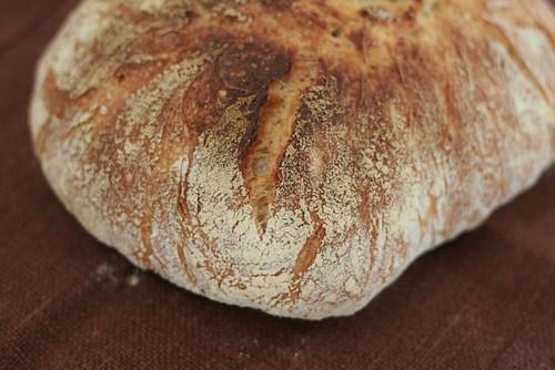 No knead bread détails d'un coin