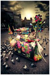 De luz y de color (Ibai Acevedo) Tags: barcelona street plaza city light sky food sun color colour building bird luz sol square calle comida bcn edificio ciudad paloma cielo present catalunya regalo pjaro