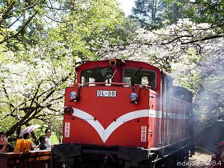 小火車 (by indigo@Taiwan)