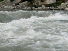 River Beas - Video Clip  (Flickr Explored)