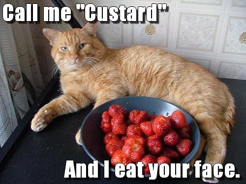 Bite me, Strawberry Shortcake...