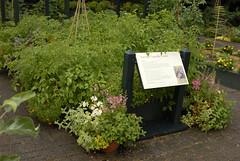 Louise Loeb Vegetable Garden