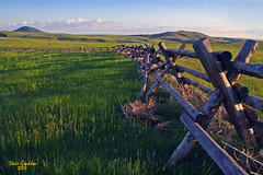 prairie fence (artfilmusic) Tags: montana