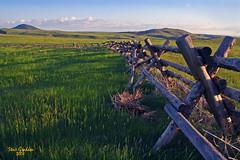 prairie fence (artfilmusic) Tags: montana