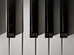 Piano Keys (Four Symbols) Tags: music white keys piano musical synth instrument musicalinstrument rhodes synthesizer pianokeys otherkeywords