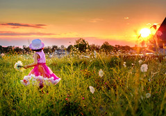 sunset glow (mylaphotography) Tags: sunset sun field gold golden backyard toddler child view skirt hdr pettiskirt 135mm flowres frontofourhouse mylaphotography 135f20l rahijaber pickingflowrs