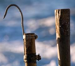 Fishing Hook (C) 2008