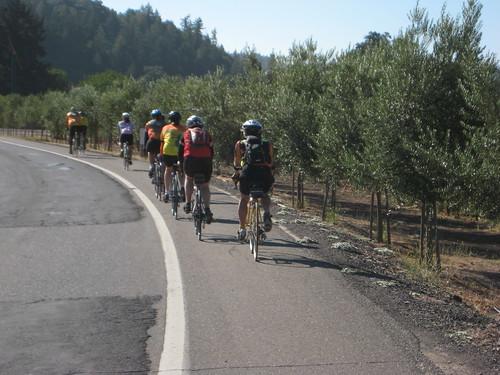 OYJ on Silverado Trail