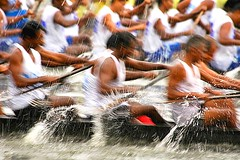 Nehru Trophy Boat Race Alleppey (Ashit Desai) Tags: india sport rural boat snake games kerala 2008 alleppey desai keralabackwaters boatraces alappuzha nehrutrophyboatrace anawesomeshot ashit alleppeybackwaters boatracealleppeykerala nehrutrophyboatracealleppeykerala alleppeyboatrace nehrutrophyboatracealappuzha boatracesalappuzha boatracealleppeyimages snakeboatracealleppeykerala aashit