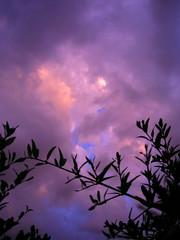 Tramonto in rosa (Sweet witch) Tags: iq artisticexpression bej anawesomeshot impressedbeauty goldsealofquality exquisiteimage luoghimagici damniwishidtakenthat awardtree