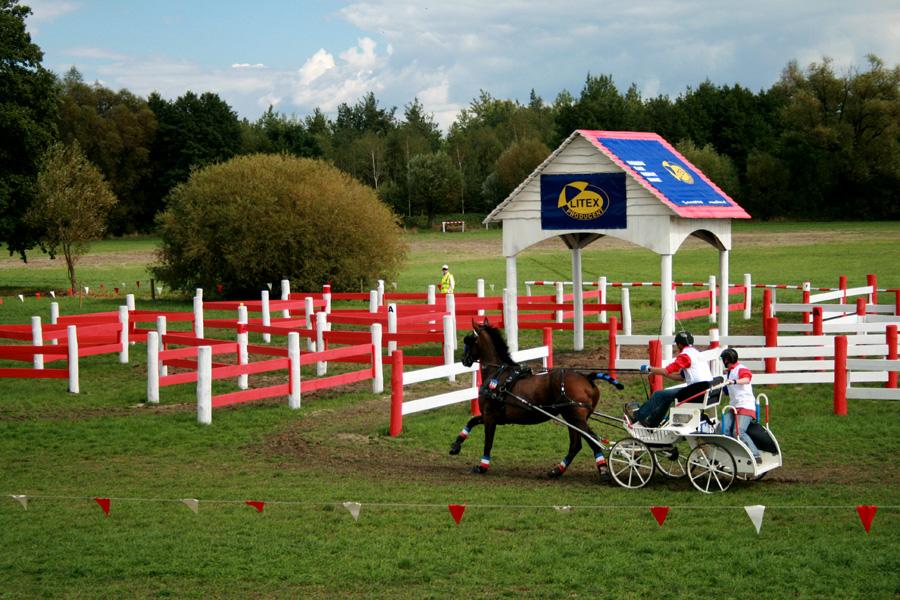 World Singles Horse Driving Championsips / Jarantów 2008
