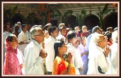 "Praying in  Radha Raman Mandir in  Vrindavan/India (Ginas Pics) Tags: girls india color smart yoga religious temple milk worship colorful god prayer religion praying ceremony altar holy seva sri sacred offering gods spiritual devotee krishna krsna puja deity veda asana pilgrim mandir radha darshan fasting pujas mathura vrindavan gopi travelphotography asura ginaspics harekrsna yamuna prasadam goswami janmashtami indiapics janmashthami bhagavadgita swamiji bhajans vaisnava pujari radhe baghwan krishnasbirthday radharaman aulai gopuran vaisakha holypics srimatiradharani salagramsilas gotamishakra padmanab ""gitamritamahodadhaye"" girlspraying sriradharaman reginasiebrecht copyright©2015reginasiebrecht krishnajayantijanmashtamijanmashtami2016isonthursday the25thofaugust"