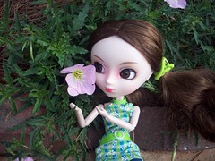 Pretty as a  Primrose.. (Harmony909) Tags: flower yard garden doll pullip reika primrose