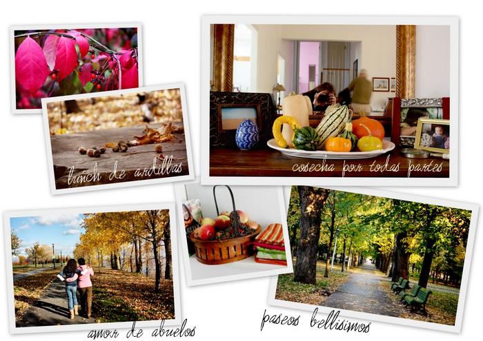 otoño parques