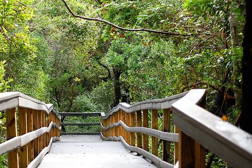 Matanzas Nature Walk