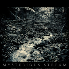 Mysterious Letchworth Stream (:: Igor Borisenko Photography ::) Tags: longexposure trees bw ny newyork leaves contrast forest spectacular waterfall woods key rocks stream long mood moody low rich bad dream dramatic western letchworthstatepark nightmare allrightsreserved splittoned cs3 highquality digitaldarkroom exosure igorb81 igorborisenkophotography silverefexpro30