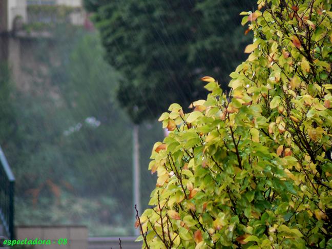 llúvia