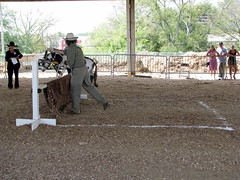 100 Things to see at the fair outtake: Donkey Hurdles
