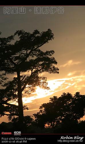 你拍攝的 20081116數位攝影_阿里山之旅310.jpg。