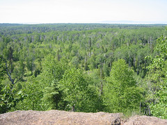 Greenstone Ridge Isle Royale (Rock Harbor Lodge, Michigan, United States) Photo