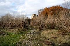 Sulle orme dell'Arno (fra1milione) Tags: fiume arno arezzo buonriposo