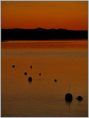 Buoys at sunset (ccgd) Tags: colour scotland boat highlands colours vessel cromarty buoys gloaming cromartyfirth buoyant coastuk ispeltitbouysnotbuoys