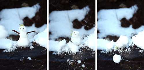 Death of King Snowman