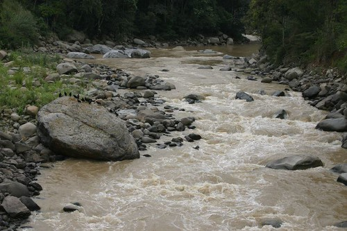 One of numerous small rivers coming from the high Ecuadorian Andes...