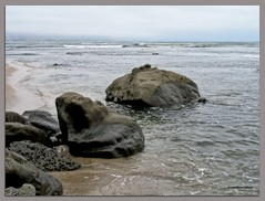 Orton Beach Scene (MyRidgebacks - Sharon C Johnson) Tags: halfmoonbay sanmateocoast naturescene northernca mavericksbeach abigfave ortonimagery impressedbeauty myridgebacksphotography lizasenchantedgarden