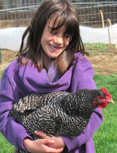 The Chicken Whisperer...